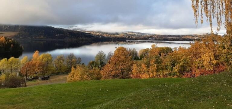 Norges grønne fagskole – Vea