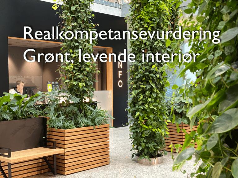 Realkompetansevurdering Grønt, levende interiør